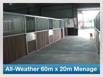 All-Weather 60m x 20m Menage